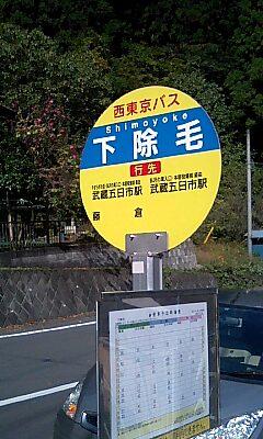 Shimoyoke
