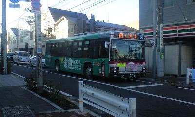 Shibu21