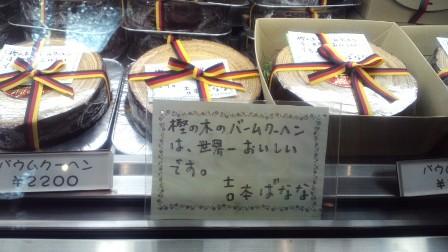 Kashinoki_2