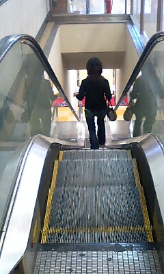 Escalater