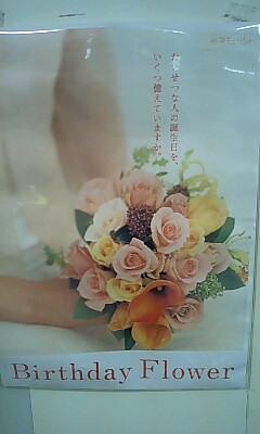 Hana_cupid_2