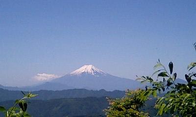 Okutama_huji