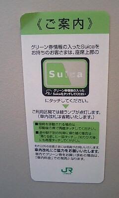 Shoshin_green_4