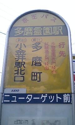 Tamareien_stn_busstop